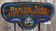 Roaring Judy Fish Hatchery, Almont, Colorado