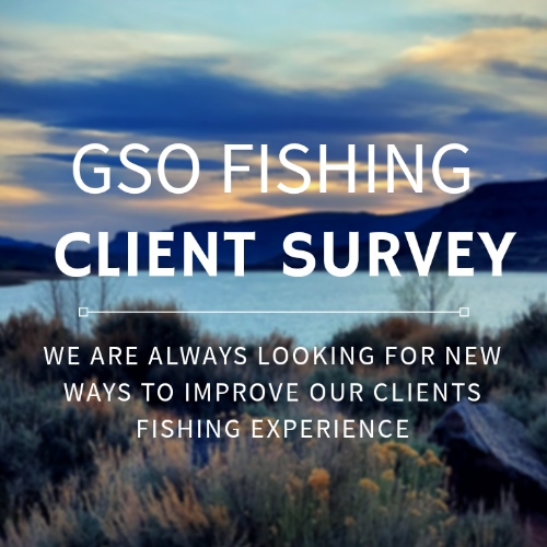 GSO Fishing - Client Survey