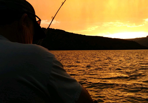 GSO Fishing - Fishing Guide/ Owner Andy Cochran