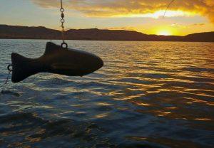GSO Fishing - Blue Mesa 4 Fins Sunrise