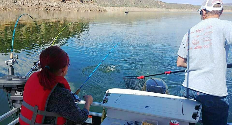 Trolling: GSO Fishing guide owner Andy Cochran netting Salmon at the back of the boat for our junior angler at Blue Mesa Reservoir.