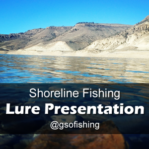 Lure Presentation: Showing the sunny shoreline of Blue Mesa Reservoir in the fall.