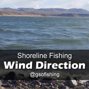 Wind Direction: Windy water surface of Blue Mesa Reservoir in the Spring.